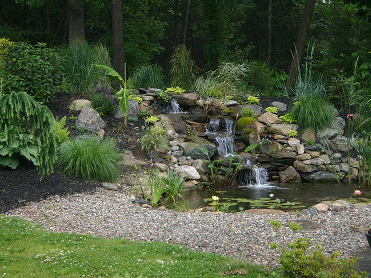 Backyard pond with rocks and plants surrounding